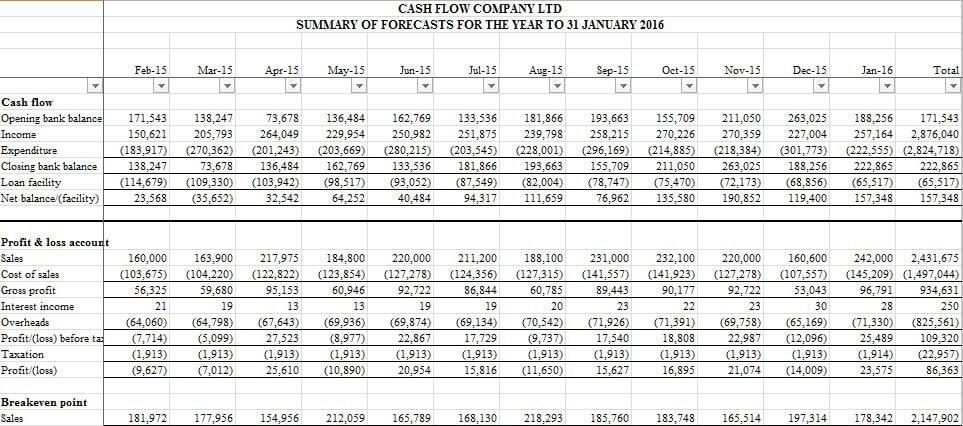 Cash and profit forecast summary report